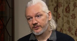 assange-no-id-31-660x330